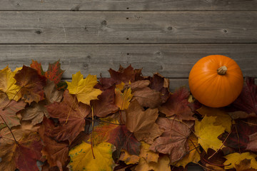 Dried Maple Leaves and a Pumpkin with Copy Space