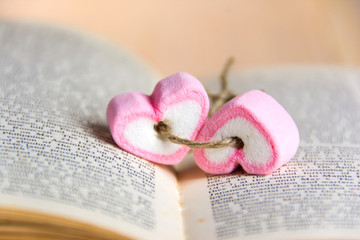 two heart shape marshmallow  on book for valentines day concept