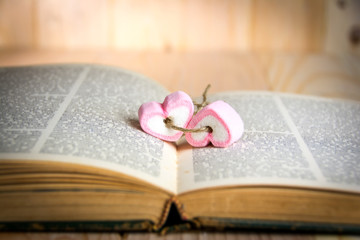 two heart shape marshmallow pink  on book for valentines day con