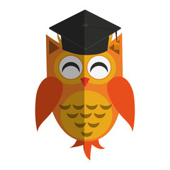 owl cartoon with graduation cap over white background. colorful design. vector illustration