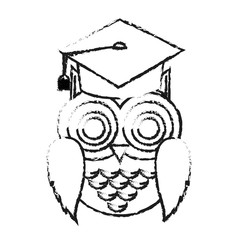 owl cartoon with graduation cap over white background. vector illustration