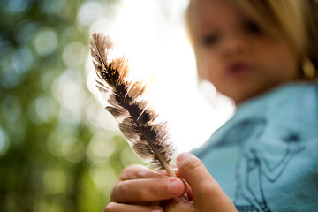 Young child inspecting bird feather