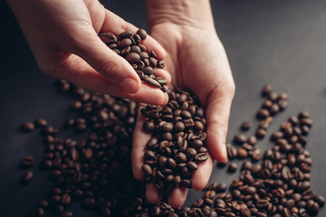 coffee beans in female hands gray background...