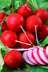 Ripe red radishes on a plate