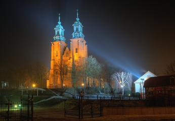 Photo sur Toile Monument Katedra w Gnieźnie nocą