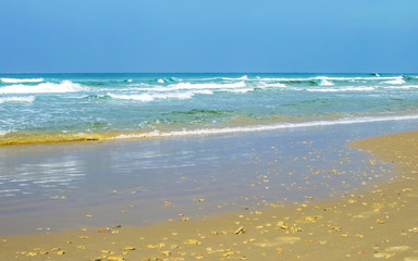 Sandy beach against the backdrop of sea