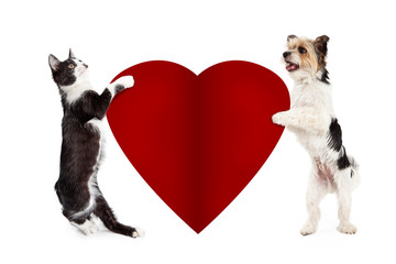 Wall Mural - Cat and Dog Holding Blank Valentine Heart