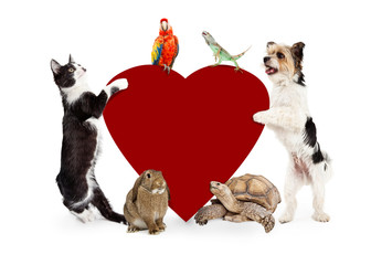 Wall Mural - Group of Pets Around Valentines Heart