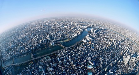 Big city view from the tallest tower in Sumida. Tokyo. Japan.