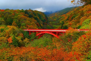 【山梨県】東沢大橋の紅葉