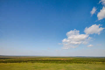 Panorama of the Tsavo East National Park in Africa