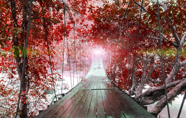 Finish or Goals Line Concept. Lights at The End of Perspective Hanging Wooden Bridge as a Walkway Along with Fantasy Autumn Red Leaves of Trees and over The River in National Park of Ranong, Thatiland