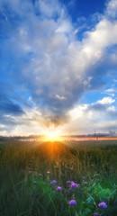 Foto op Aluminium Ochtendgloren Sunrise Livin The Life