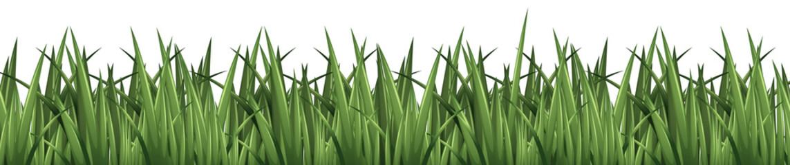 Seamless background design with green grass