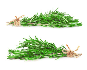 Fresh rosemary branches, isolated on white background