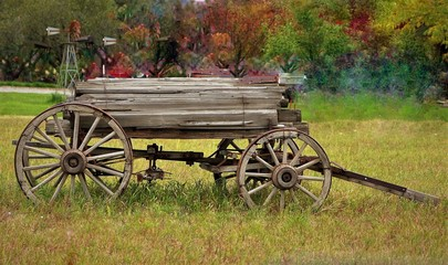 Old Wagon/Cart