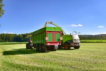 Fototapete - Grasernte - Landtechnik beim Gras häckseln