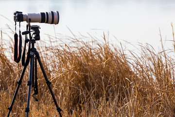 Professional camera with telephoto lens on a tripod during lands