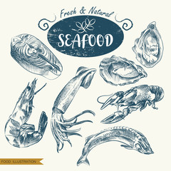 Set of hand drawn seafood isolated on white background. Seafood sketch elements. Retro hand-drawn clams, fish, squid, shrimp, lobster vector illustration. Great for poster, banner, voucher, coupon.