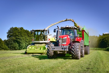 Wall Mural - Grass harvest for grass silage - with modern technology