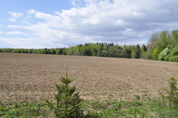 Plowed field in early spring