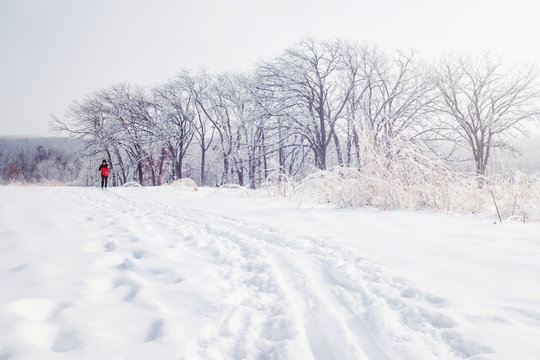 Cross country skier on a trail