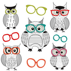 set of isolated owls with glasses - vector illustration, eps