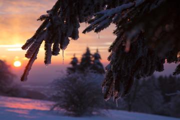Wintersonne im Vogelsberg