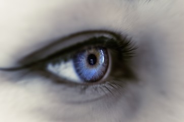look into the distance;  eye in detail; real reflection in the eye; blue eye