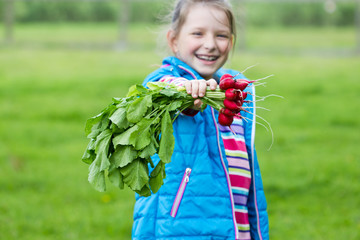 cheerful child with a bunch of radishes in the hands on a green background in the garden