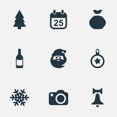 Set Of 9 Simple Celebration Icons. Can Be Found Such Elements As Bag, Snow, Christmas Character And Other.