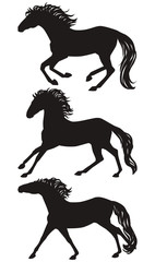 Vector running horses silhouettes set. Isolated galloping group of a horses, black on white