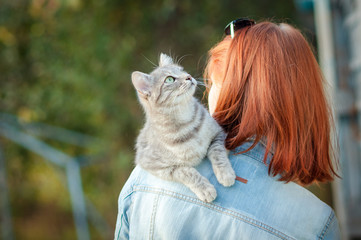 Grey tabby cat sitting on a shoulder at the girl