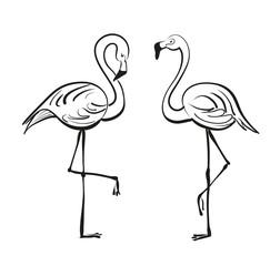 Flamingo. Vector drawing.