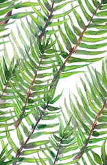 Seamless pattern with diagonal tropical palm tree leaves painted in watercolor on white isolated background