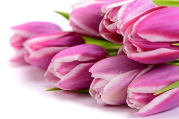 Blumenstrauß mit frischen Tulpen