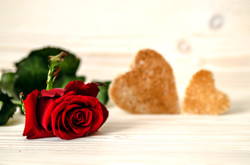 Red rose lying on white a wooden surface. In the background are two toasts in the form of hearts.