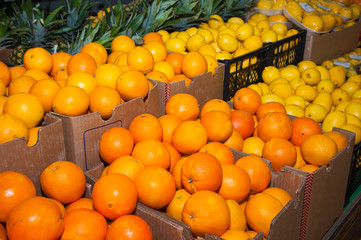 Orange fruit on the market
