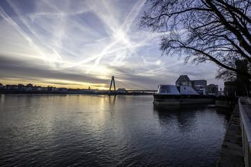 Severinsbrücke in Köln im Sonnenaufgang