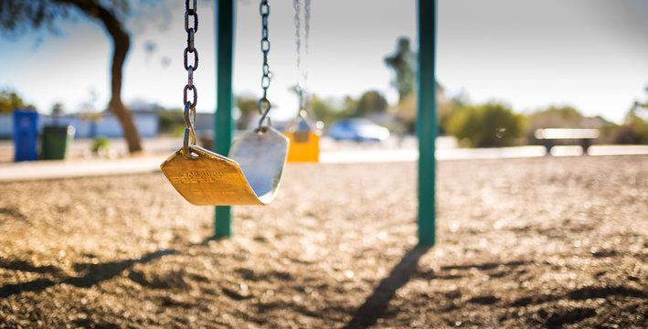 Swings-Strap-Horiz