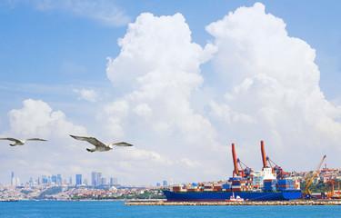 Container Cargo freight ship by crane bridge.