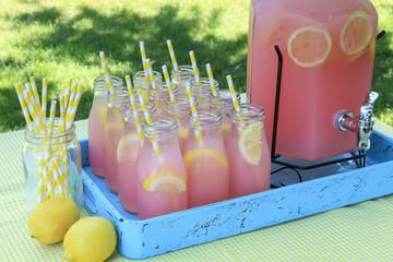 Pink Lemonade at Picnic in Park
