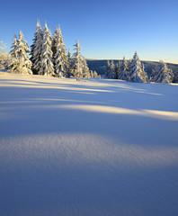 Tief verschneite, unberührte Winterlandschaft im warmen Licht der Abendsonne, funkelnde Schneekristalle