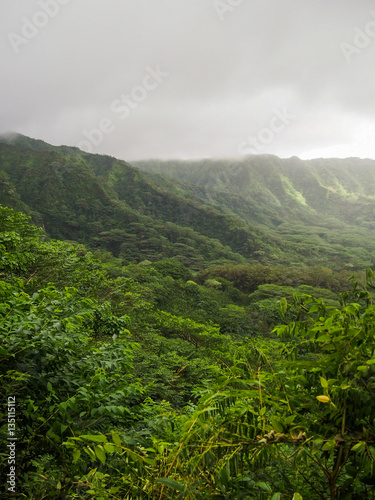The lush green manoa valley located on oahu in hawaii was a filming location for jurassic park - Telecharger jurassic park 4 ...