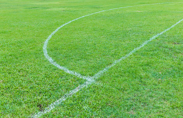 Football field with grass