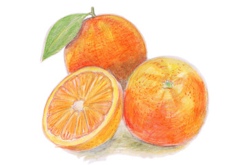 Buntstiftzeichnung: Stillleben mit drei Apfelsinen: Mit Blatt, ganz und halb