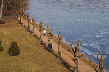 Uferpromenade mit Kopfweiden