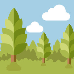 Deep Forest flat background25