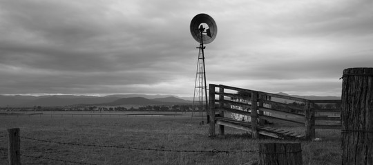 Windmill in the countryside. Black and White. Wall mural