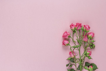 Bouquet of roses on a pink background. Space for text.
